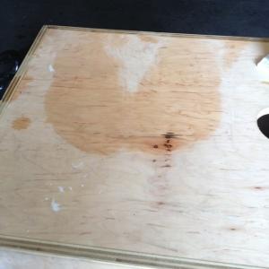 Sweaty butt print I left on the plyo box.