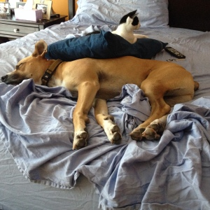 Post-nap with Meg and Luke.